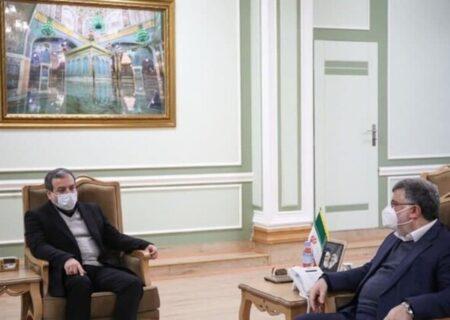 کشورهای ایران و افغانستان با احترام بر اصل قانون اساسی دو کشور ، آینده روشنی در همکاریهای همه جانبه خواهند داشت