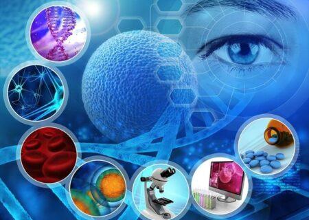 سلولهای بنیادی چگونه آسیبهای بافتی را ترمیم میکنند
