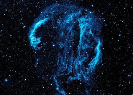 عروس دریایی در فضا یا جمجمه فضایی؟ + تصویر